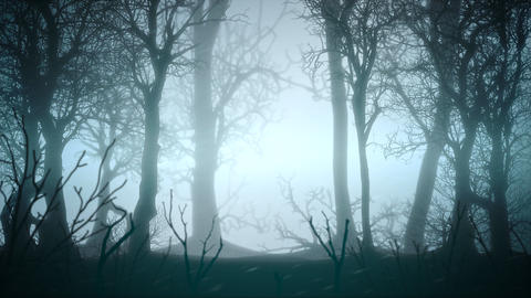 Mystical horror background with dark blue forest and fog abstract backdrop Animation