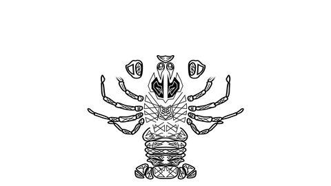 Black and white animated drawing, tribal crayfish, Cancer useful as horoscope sy Animation