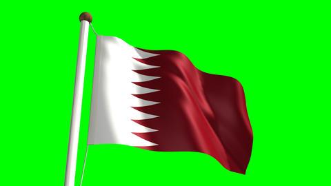 Qatar flag Stock Video Footage