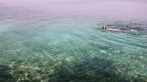 snorkelling in croacia Stock Video Footage