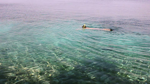 snorkelling in croacia Stock Video Footage