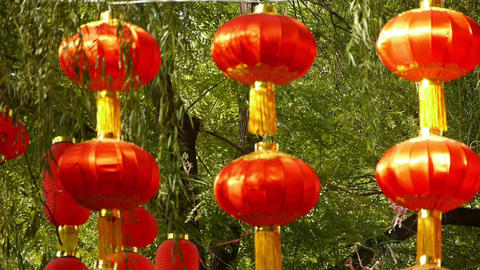 Red lanterns & willow swaying in wind,elements of... Stock Video Footage