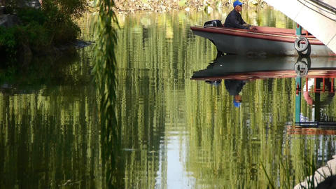 old people on boat under bridge,willow reflection in... Stock Video Footage