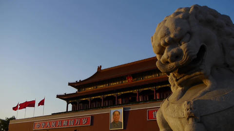 ancient bronze lion in front of forbidden City at... Stock Video Footage