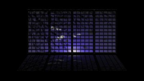 Japanese Window 2521 CG動画