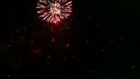 fireworks Stock Video Footage