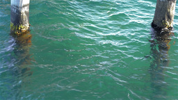 Clear Sea Water Under a Jetty Footage