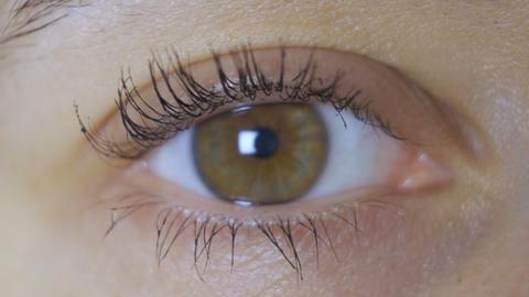 Close-up of woman's eye. Macro beautiful female eye Live Action