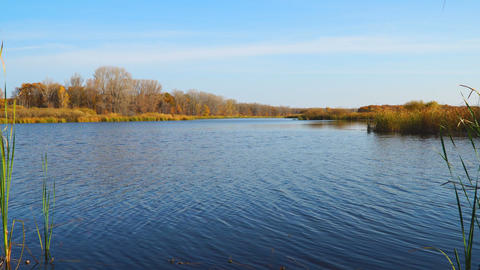 Blue sky over autumn orange forest and lake with blue water Live Action