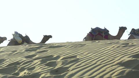 Caravan Stock Video Footage