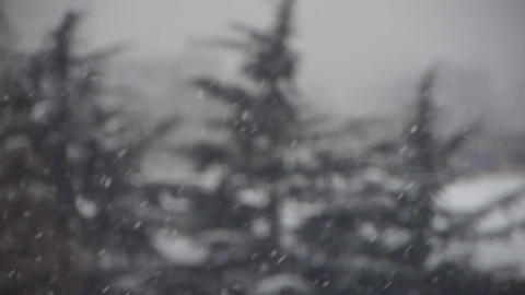 falling snowflake,snow cover house & forest Stock Video Footage