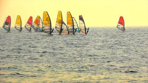 Sailboard Windsurfing Race Start Stock Video Footage
