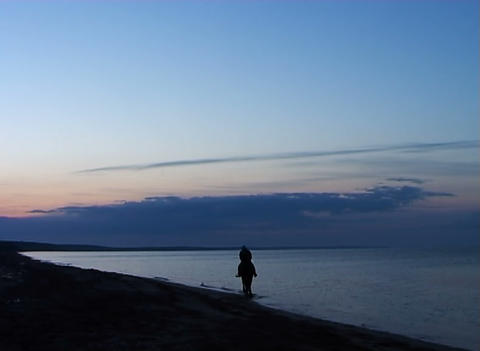 Mysterious horseman leaves on sunrise Stock Video Footage