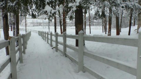Fences around horse paddock in winter 2L Stock Video Footage