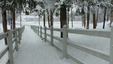 Fences around horse paddock in winter 2L Footage