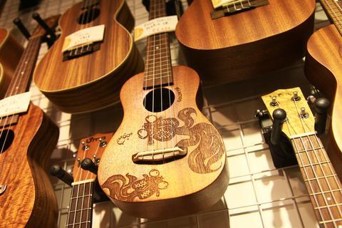 Zhengxing musical instruments 相片