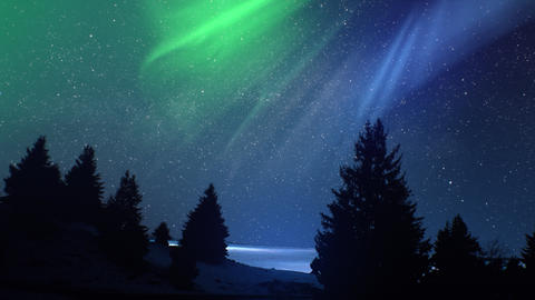 Realistic real time Northern lights Polar Aurora Borealis dancing over trees in Live Action