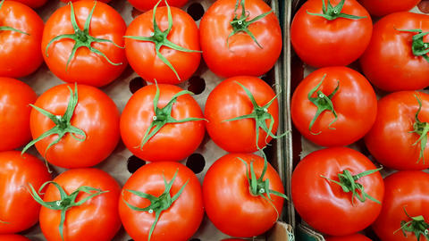 Fresh tomatoes are stacked in a row on the counter in a grocery store. Fresh Live Action