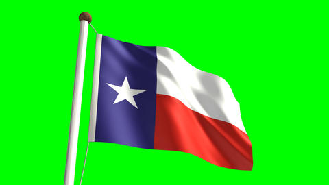 Texas flag Stock Video Footage