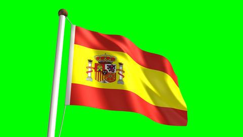 Spain flag Stock Video Footage