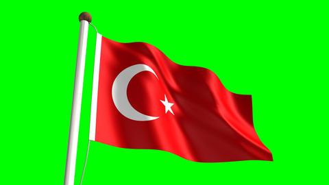 Turkey flag Stock Video Footage