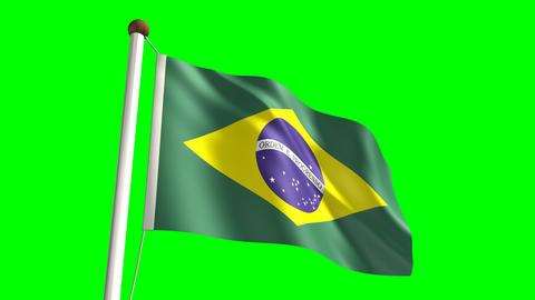 Brazil flag Stock Video Footage