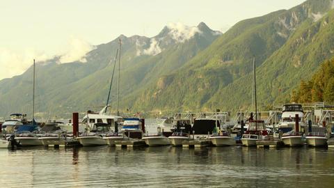 Boats Coming in and out by the dock Stock Video Footage