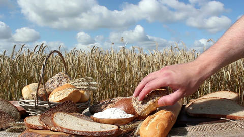 Bread And Grain stock footage