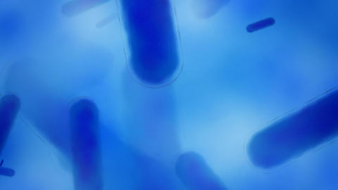Blue bacteria Stock Video Footage