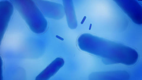 Blue Bacteria stock footage