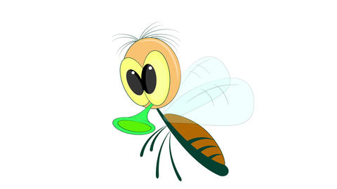 Flying fly on a white background Animation