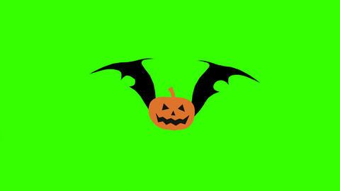 Flying Pumpkin Bat: Loop + Matte Animation