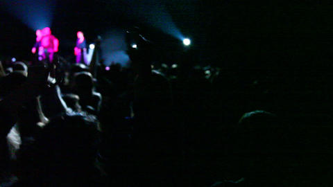 Concert Crowd 0