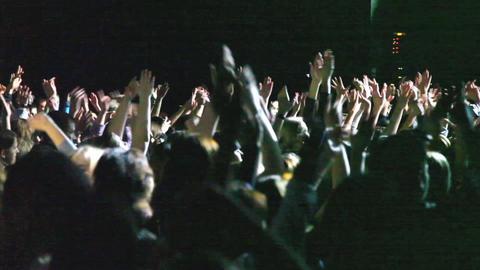 Concert Crowd 2