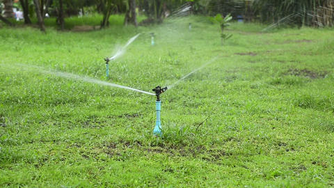 Lawn watering Stock Video Footage