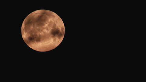 Time-lapse of moon moving behind the tree branches 4a Footage