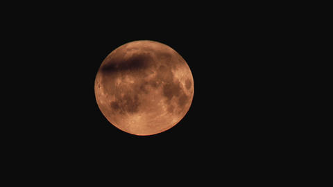 Time-lapse of moon moving behind the tree branches 4a Stock Video Footage