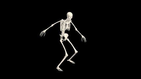 Dancing Skeleton 3D. 3D Skeleton Dance Animation. Skeleton 3D dance Animation