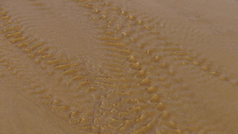 water flowing over sand on beach Stock Video Footage