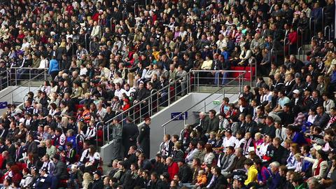 Stadium Crowd Footage