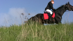 Horse with horsewoman hoof beats Stock Video Footage