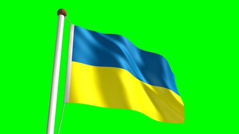 Ukraine flag Stock Video Footage