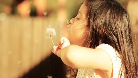 Dandelion little girl innocence Child Blowing a freedom spring childhood summer Live Action
