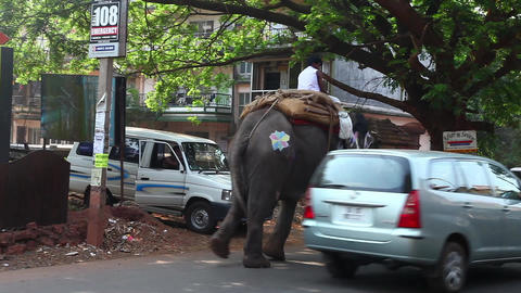 Indian traffic Stock Video Footage