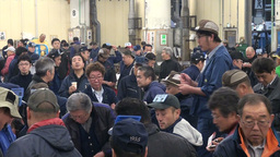 Tuna auction, crowd, people, busy, shouting, Japan Footage