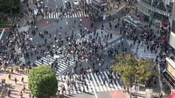 Shibuya crossing, pedestrians, intersection, peopl Footage