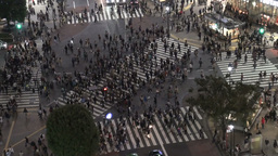 Pedestrians cross the Shibuya intersection in Toky Stock Video Footage