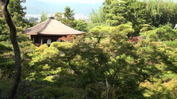Beautiful Silver Pavillion nestled in the forest i Stock Video Footage