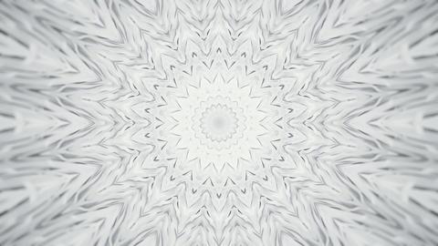 White Radial Kaleidoscopic Abstract Background Animation