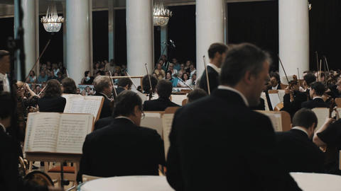 String orchestra musicians preparing for a concert in classical style music hall Live Action